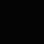 Zuecos Negros