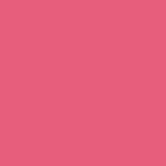 Zuecos Calzuro Rosas
