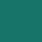 Zuecos Verdes